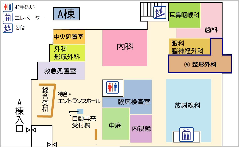 floor_1_seikei
